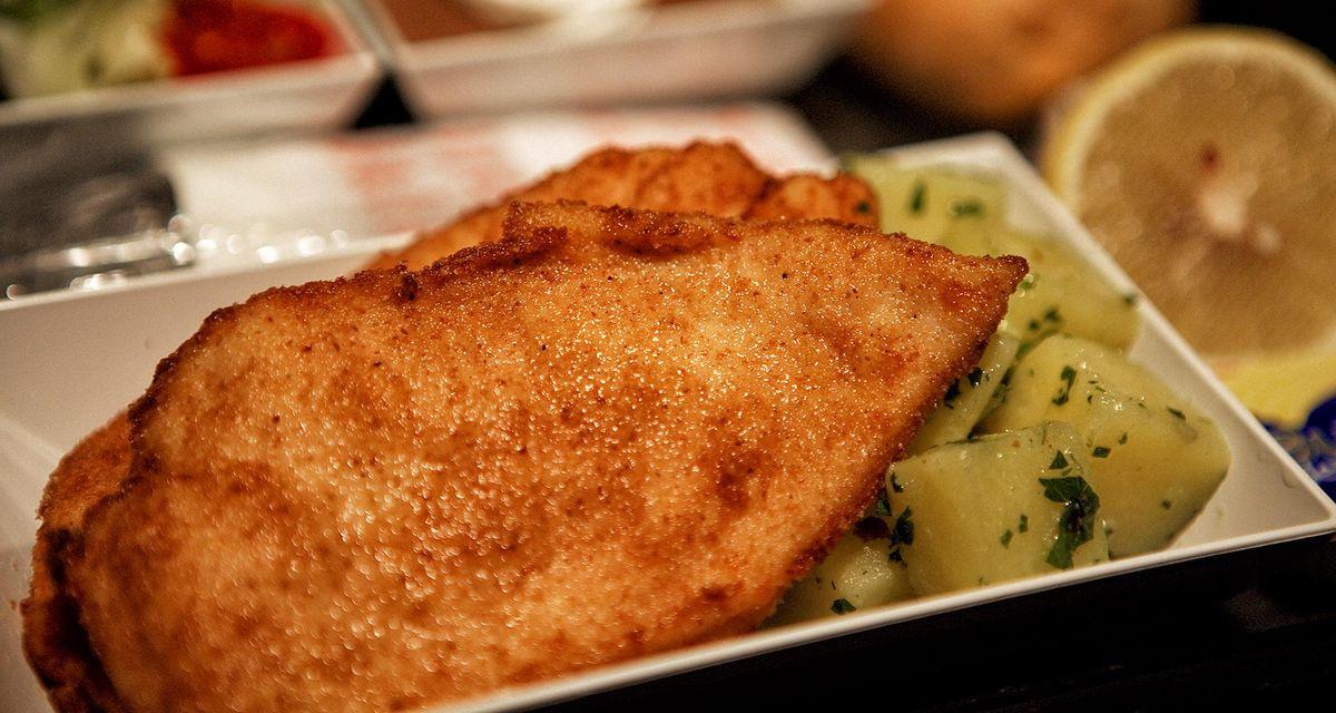غذا در هواپیمایی پگاسوس