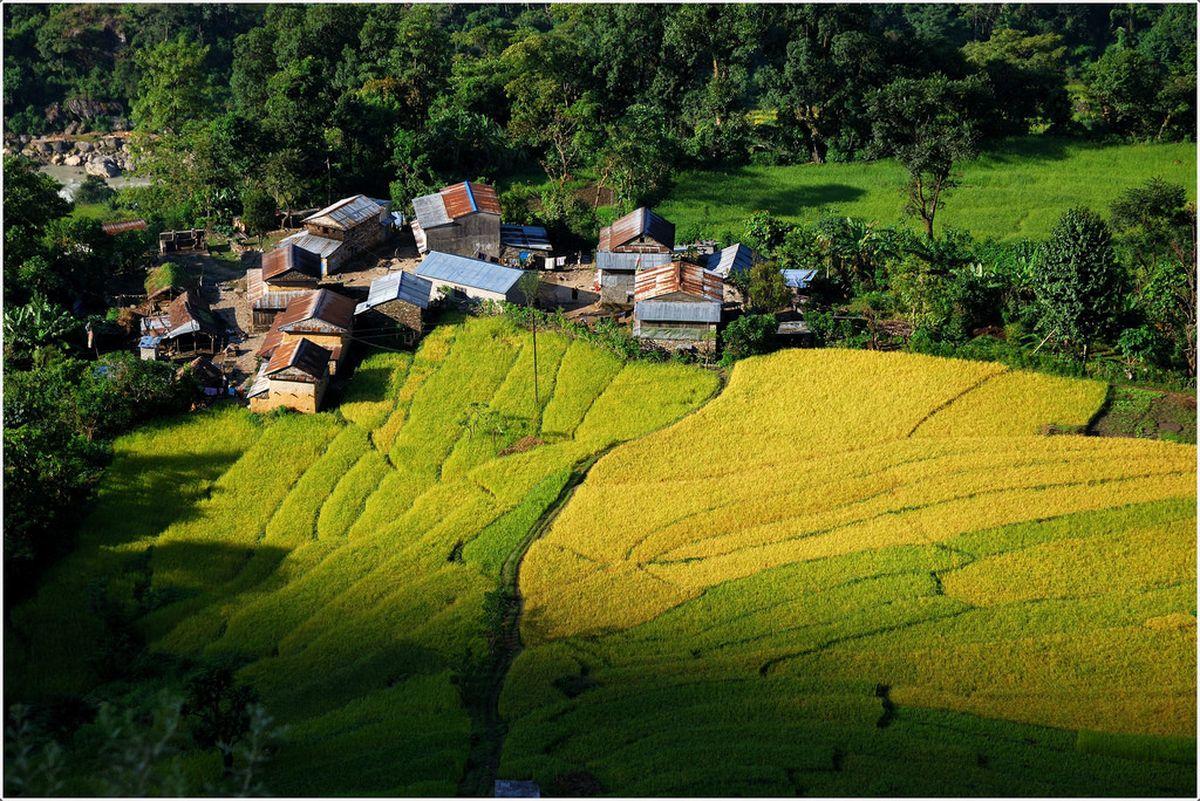 طبیعت در نپال