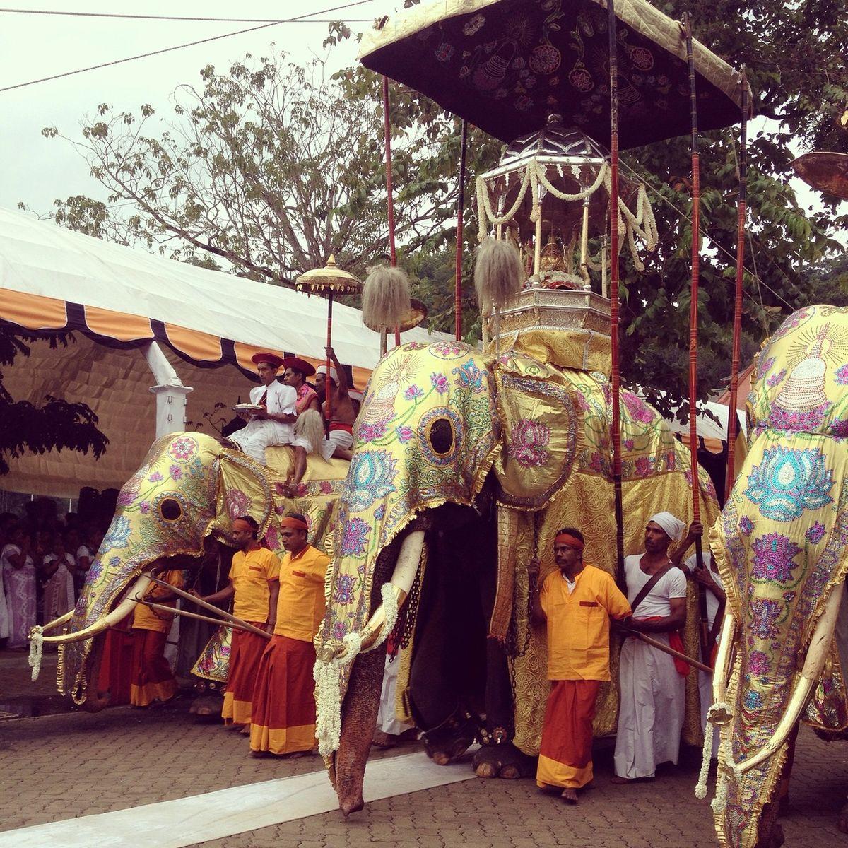 پرستشگاه سلطنتی Udawattakele در کندی سریلانکا