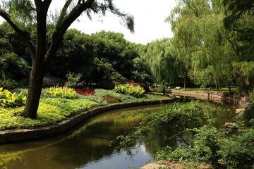 پارک حیوانات وحشی در شانگهای - چین