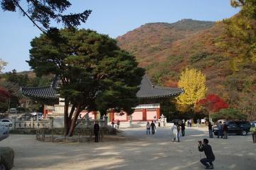 معبد بِئُمِئُسا در بوسان - کره جنوبی