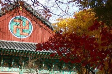 معبد هائینسا در دائگو - کره جنوبی